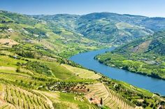 Full-Day Tour in Douro with Lunch 			This 9-hour Tour from Porto to Douro Valley is a set of harmony and beauty, enjoy a fascinating tour through the Douro Valley, and discover four fabulous cities in Douro on this 9-hour tour from Porto. Enter in the wine culture and know everything about the wine production while visiting four fabulous regions: Explore and visit Lamego, one of the most important urban centers in the Douro region, Pinhão, and return through Sabrosa in the hea...
