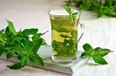 El consumo de algunos tés son excelentes ayudas para bajar de peso con más facilidad. Te compartimos 5 recetas.