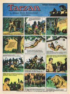 "1931- ""Tarzan"" by Hal Foster and Burne Hogarth. Foster (August 18, 1892 – July 25, 1982), who later became famous for ""Prince Valiant"", first drew Tarzan in January, 1929 for the comics section. He left the strip but came back In 1931 to draw only the Sunday episodes. An expert draughtsman and storyteller, Foster's panels read like storyboards for the best Tarzan movie never made."