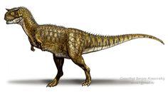 http://0.tqn.com/d/dinosaurs/1/0/-/Q/-/-/carnotaurus-sastrei.jpg