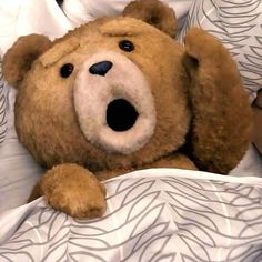 'Magic Mike,' 'Ted' Defy Expectations with Big Midnight Box Office Ted Bear, Cute Quick Hairstyles, Teddy Bear Pictures, Movie Photo, Animal Quotes, Travel With Kids, Cartoon Characters, Good Movies, Pooh Bear