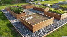 Kuvahaun tulos haulle istutuslaatikko Vegetable Garden Design, Veg Garden, Terrace Garden, Garden Boxes, Home And Garden, Outdoor Greenhouse, Outdoor Gardens, Backyard Projects, Growing Vegetables