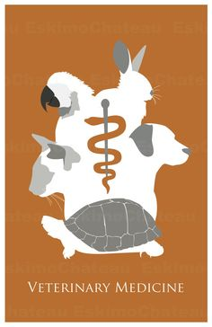 Veterinary Medicine/Tech 11x17 minimalism poster by EskimoChateau
