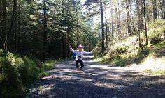 Eventyrskogen på Stord Country Roads, Boden