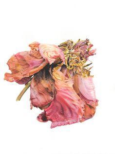 Botanical Drawings, Botanical Prints, Watercolor Flowers, Watercolor Art, Illustration Botanique, Nature Drawing, Floral Artwork, Nature Illustration, Plant Art
