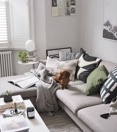 How to update your home this summer without buying anything new. Cosy, Scandinavian-style living room with L-shaped sofa, white shutters, monochrome accents and a sausage dog