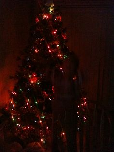 Taken on 21st December 2013 of the photographers Christmas tree. He caught a shadowy figure standing in before it, but he swears there was nothing there at the time the picture was taken.