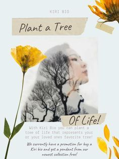 Buy a Kiri Bio get a FREE pendant from our newest collection! Cremation Urns, Cremation Jewelry, Memorial Ornaments, Pet Urns, Tree Of Life, Trees To Plant, Biodegradable Products, First Love, Pendant