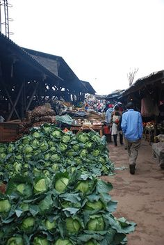 Cabbage at the market in Mutare, Zimbabwe, Africa.  Travel to Zimbabwe with INSPIRATION ZIMBABWE, your boutique Destination Management Company (DMC) for all inbound travel to Zimbabwe, Africa. INSPIRATION ZIMBABWE is a member of GONDWANA DMCs, a network of boutique DMCs across Africa and beyond. www.gondwana-dmcs.net