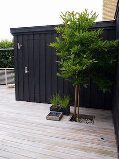 Deck with a tree, black wall outdoor spaces trädgård träd, t Back Gardens, Outdoor Gardens, Dream Garden, Home And Garden, Outdoor Rooms, Outdoor Decor, Garden Spaces, Planter Boxes, Garden Inspiration