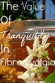 If there's one thing I NEED when dealing with my FIBROMYAGLIA and Chronic Pain, it's PEACE!  LOVED the recipe for Honey Cookies too!♥♥♥ *Pin Now Read Later