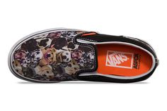 Vans X ASPCA Collection in for humans