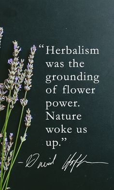 Medical Herbalist David Hoffmann is a humble and reluctant hero, but his serendipitous path to herbalism, his passion, and conviction have inspired new generations of herbalists to relight the torch of a once-dying tradition.