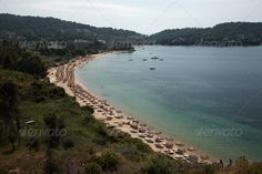 Looking down onto Koukounaries beach ...  Koukounaries beach, beach, crowded, famous, greece, greek, holiday, island, lounger, mediterranean, parasol, sand, sea, skiathos, sporades, sunbed, vacation