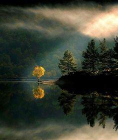 Beautiful Nature, Art And Inspirational Quotes