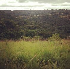 My beautiful old home town Kloof  - Kloof Gorge, taken from Bridle Road, Forest Hills