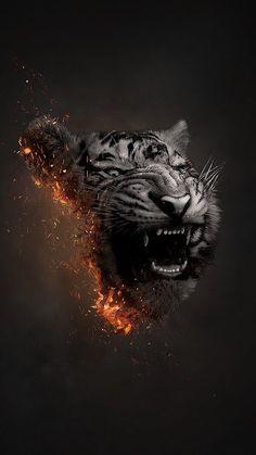 Xtinct on behance lion wallpaper, animal wallpaper, animal photography, cat art, animals Tier Wallpaper, Animal Wallpaper, Wallpaper Backgrounds, Poetry Wallpaper, Art Tigre, Animals And Pets, Cute Animals, Plakat Design, Tiger Art