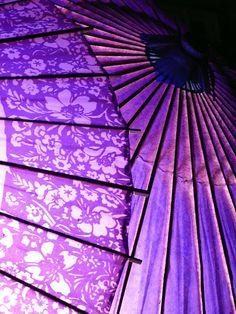 Purple parasols.