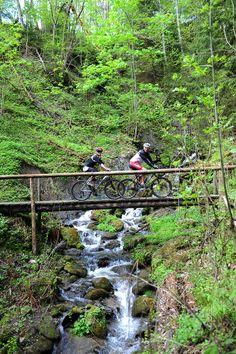 Mountainbiken auf 25.000 Höhenmetern - 930 km ausgeschilderten Routen. Das aQi Hotel Schladming ist Mitglied der Gruppe Mountainbike-Hotels-Schladming-Dachstein. Hotels, Mountains, Nature, Travel, Ski, Group, Hiking, Voyage, Viajes