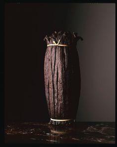 Jean-Louis Bloch-Lainé La vanille, 1994  photographie réalisée pour le livre « Pierre Hermé. Secrets Gourmands », avec Marianne Comolli et Yann D. Pennors