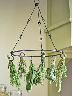 This would make my kitchen smell wonderful!   Dried Herbs. (Make with embroidery hoop, macrame cord and hooks?)