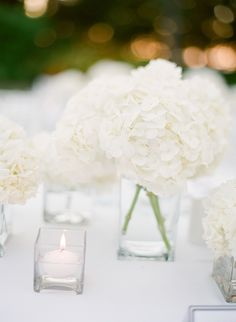 Hydrangeas -- Solve all our decisions! See the wedding on Style Me Pretty: http://www.stylemepretty.com/southeast-weddings/2014/02/10/marie-selby-botanical-gardens-wedding/ Justin DeMutiis Photography