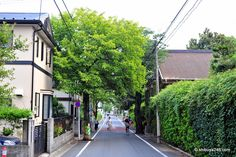 This is my image of Seiji. A leafy suburb with trees overhanging the clean narrow roads. This area of town is peaceful and laid back but very well organized