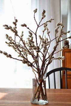 Decoração e Ideias - casa e jardim: Galhos e ramos, belas ideias para seguir este exemplo