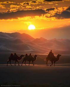 Amazing Sunsets, Beautiful Sunset, Mongolia, Desert Dream, Artist Gallery, Aesthetic Art, Beautiful Landscapes, Sunrise, Scenery