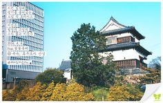 Today's Photo From Fukuoka #Today_Photo with Jin Air #jinair #fukuoka #Fukuoka #진에어 #후쿠오카 #재미있게지내요 #재미있게진에어