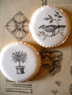 Black & white garden cookies by nice icing, via Flickr