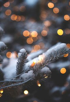 Lights are simply part of Christmas time and winter time. In winter or at Christmas time you can mak Christmas Mood, Noel Christmas, Merry Little Christmas, Christmas Decor, Christmas Tumblr, Christmas Collage, Xmas Holidays, Christmas Fashion, Christmas Paper