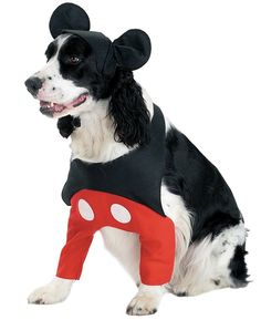 I don't just need this for whatley for halloween...need this for any day, haha