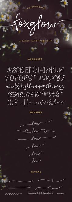 Foxglow Modern Handwritten Font - Fonts - Ideas of Fonts - Foxglow Modern Handwritten Font by angiemakes Hand Lettering Fonts, Calligraphy Fonts, Typography Letters, Typography Design, Font Alphabet, Lettering Tutorial, Lettering Styles, Monogram Fonts, Monogram Letters
