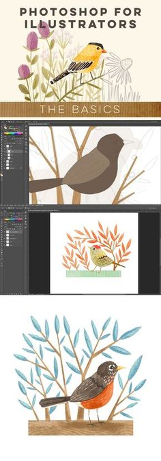 CLASS: Photoshop for Illustrators: The Basics with @stephanie_fizer #photoshop #class #illustration @atlypins