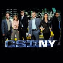 #csiny #popfunk  This design is available as a Tshirt here: $21.00 http://www.popfunk.com/mens-tees/cbs-primetime/csi-new-york/csi-ny-cast.html