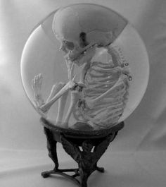 Human Fetal Skeleton in Glass Womb with Stand. OK this is just too creepy, but I can see an adaptation of the idea for Halloween using a dollar store hand in an orb. Memento Mori, The Rocky Horror Picture Show, Cabinet Of Curiosities, Gothic House, Skull And Bones, Crystal Ball, 3d Crystal, Skull Art, Vintage Metal