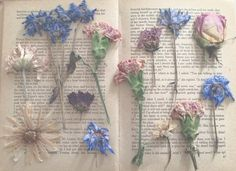 Dear diary, ❀ pinterest : sinterina ❀