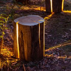 "Using only salvaged wood that otherwise would have been burnt, artist Duncan Meerding illuminates the forest with his Cracked Log Lamp.  ""By turning them into a vessel for light, we can bring the outside in, and be reminded of our intrinsic connection with nature,"" he says. The Tasmania-based artist explains that being legally blind has inspired his minimalist yet impactful designs. ""Being legally blind, this vision of light emanating from the peripheries and the highly tactile nature of my…"
