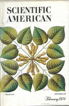 Scientific American - Feb 1974 Scientific American, Cover, Plant Leaves, Plants, Plant, Planets