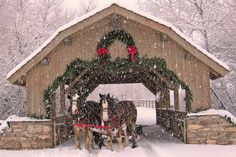 Beautiful Covered Bridge and a sleigh ride in the snow. Christmas Cover, Christmas Scenes, Winter Christmas, All Things Christmas, Christmas Time, Merry Christmas, Snowy Christmas Scene, Christmas Cards, Winter Snow
