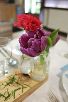 farm animals and child party / garden rose / tulip