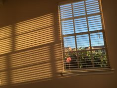 Sun Blinds, Golden Hour, Curtains, Home Decor, Pictures, Blinds, Decoration Home, Room Decor, Draping