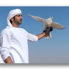 Hamdan MRM, 13/09/2014. Vía: fazza