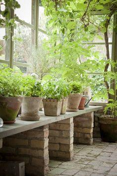 Hemlängtan: Trädgård. Murade ben och träyta.