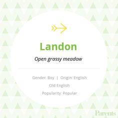 Baby Name: Landon