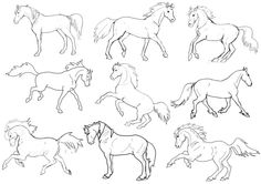 Raccoons Drawing Sketches | Horse Template Horse template by murasaki99