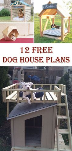 12 Free DIY Dog House Plans & Ideas - Cool DIYs 12 Free DIY Dog House Plans & Ideas If the dog spends a lot of time outside, it is good to prepare him shelter from the rain, the wind and the strong sun. Making a dog house is … Dog Kennel Cover, Diy Dog Kennel, Diy Dog Bed, Dog Kennels, Kennel Ideas, Positive Dog Training, Basic Dog Training, Training Your Puppy, Training Dogs