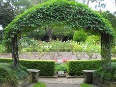 Repin Edit    Camellia Gardens, ideal location for a Garden Wedding. Parks In Sydney, Naming Ceremony, Camellia, Garden Wedding, Perfect Place, Places To Go, Landscaping, Gardens, Outdoor Structures