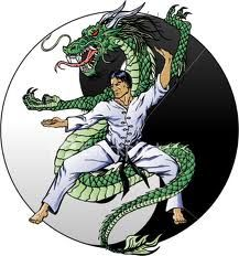 Tiger style kung fu tiger style kung fu pinterest kung fu and northern shaolin kung fu lessons in spartanburg sc chinese martial arts in spartanburg sc fandeluxe Gallery